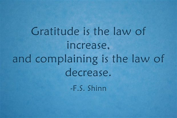 gratitude-is-the-law-of